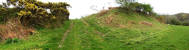 Walwyn's Castle