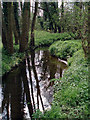 TM1897 : Flordon Common by Adrian Hodge