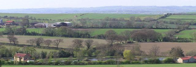 Jubilee Trout  Farm.