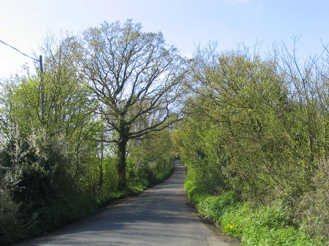 Little Warley Hall Lane, Little Warley