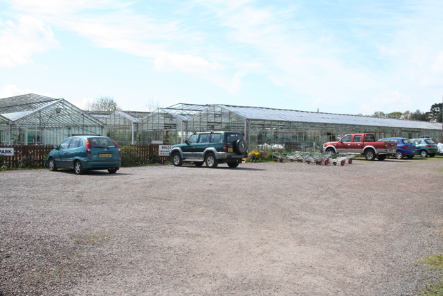 West Buckland: Chelston Nurseries