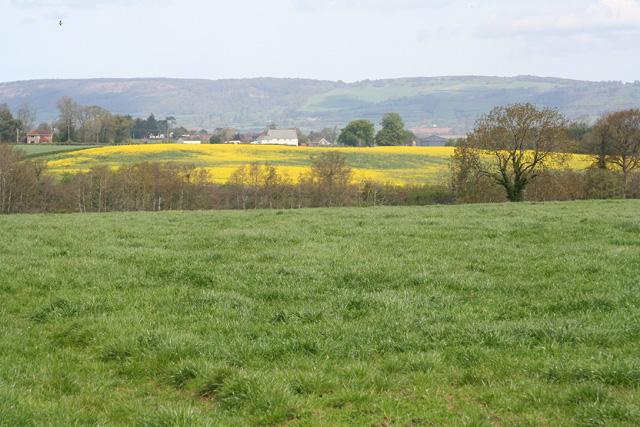Oake: towards Hillfarrance