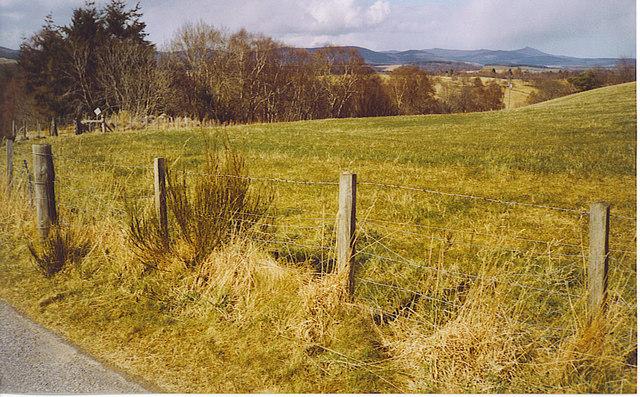 Field at Tillybirloch
