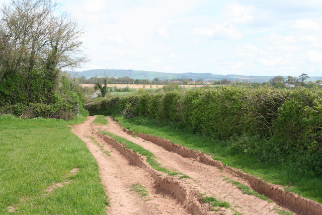 Milverton: track leading to Oake