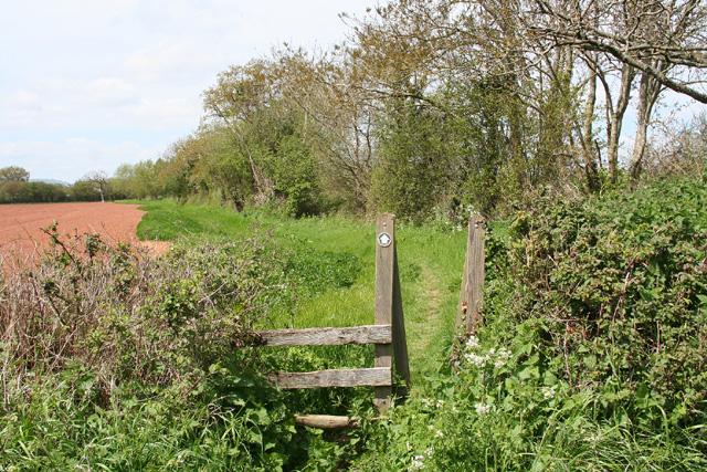 Bishops Lydeard: footpath near Portman Farm