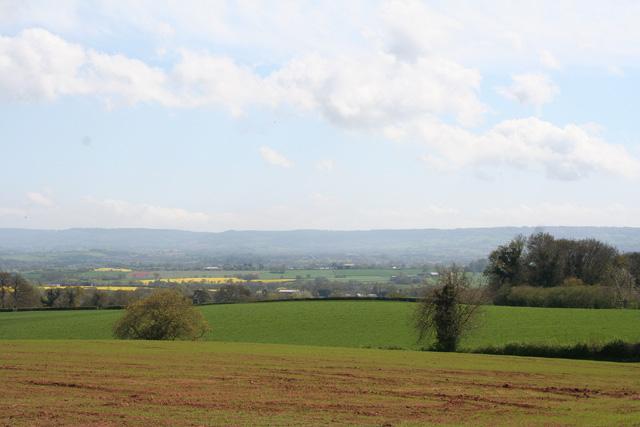 Ash Priors: near Ash Wood