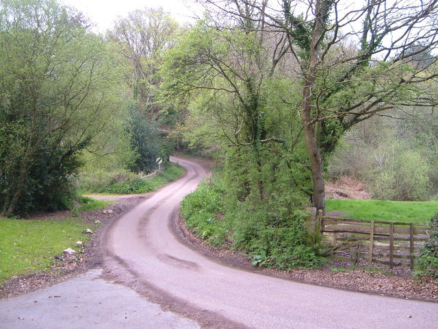 Toadpit Lane, West Hill