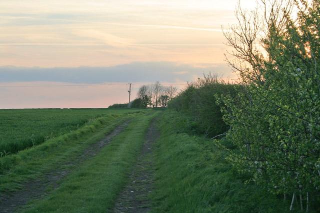 Farm track near Elton, Nottinghamshire