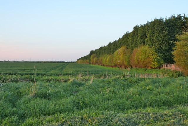 County Boundary near Bottesford