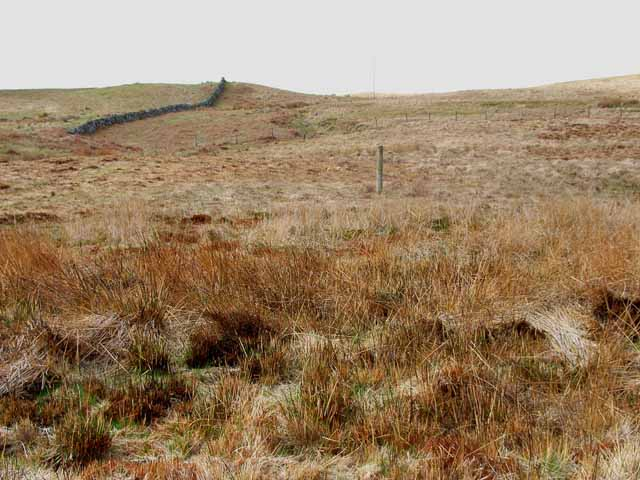 Moorland off the New Luce to Penwhirn road