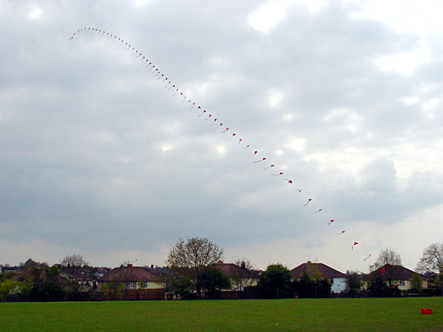 Kite Flying on Horfield C of E's playing field