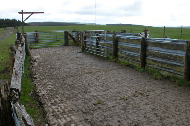 Sheep pen beside the Kerry Ridgeway
