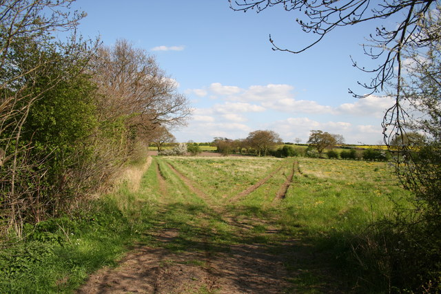 Near Pitts Farm