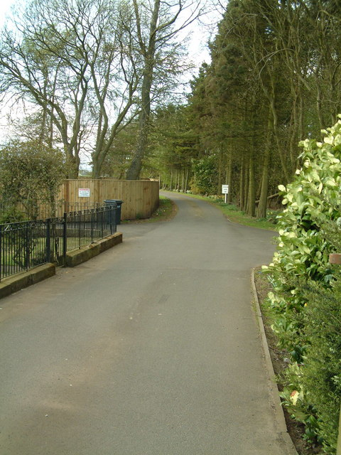 Strathenry House driveway