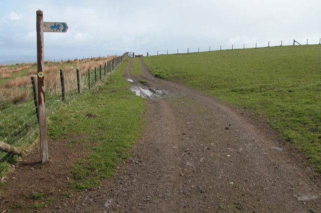 The Kerry Ridgeway