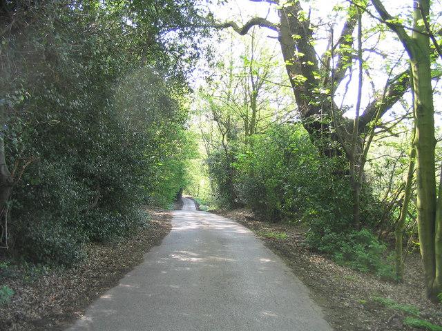 Dark Lane, Great Warley
