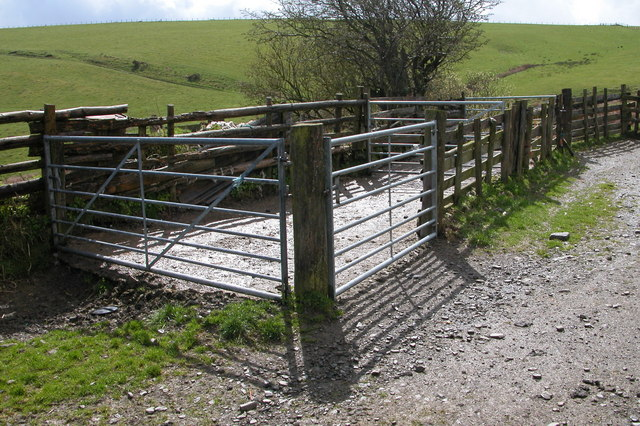 Sheep Pens on Kerry Hill