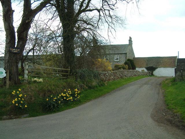 Howfold Farm