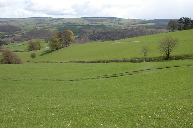 Farmland below Penarron