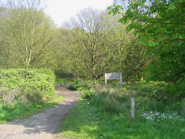 Footpath - Warley Gap