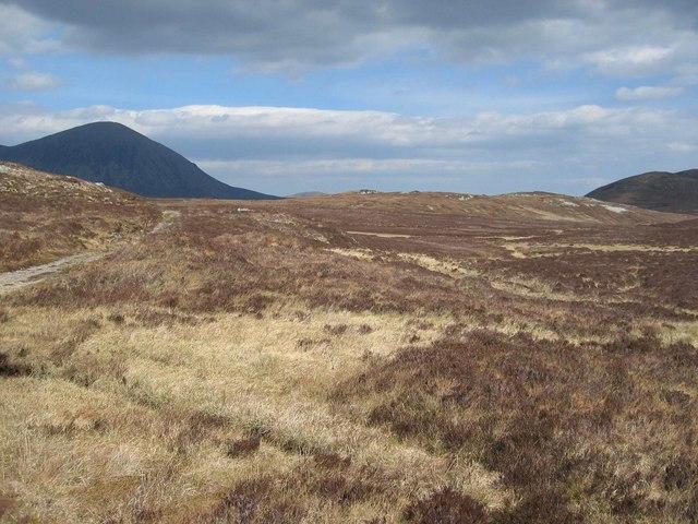 Beinn Nan Carn Native Woodland