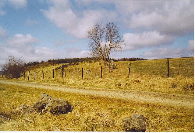Rough Grassland by the Formartine & Buchan Way.