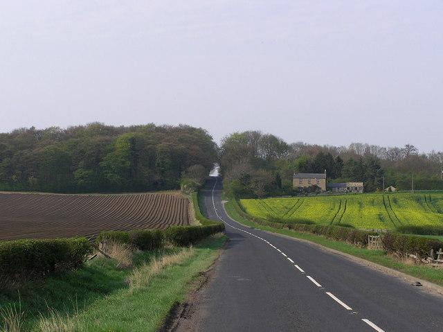 Roman Road (Dere Street)