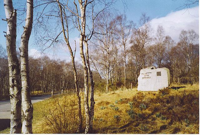 Highland Boundary Stone amongst the Silver Birches.