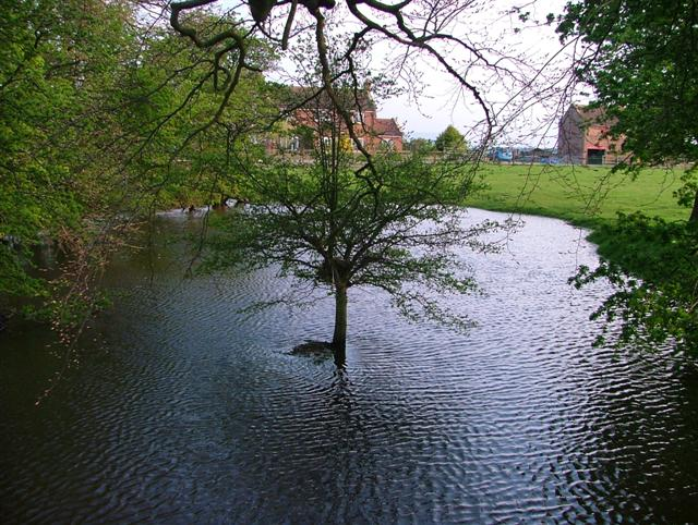Pond, Middleton Grange Farm
