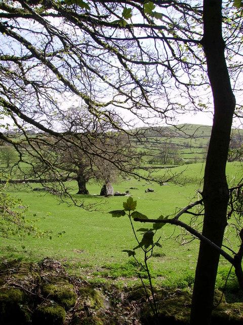 Farmland Crook