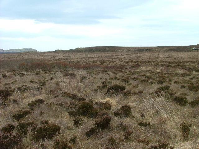 Low Lying Moorland