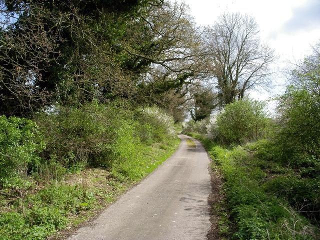 Drift Road, Near Chilbolton