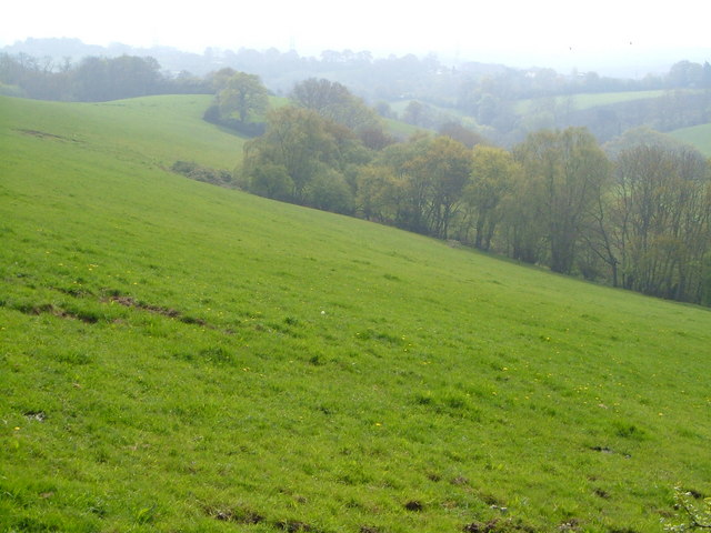 Valley east of Longdown