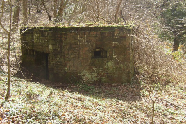 Pillbox in the wood, Hurtmore, Shackleford