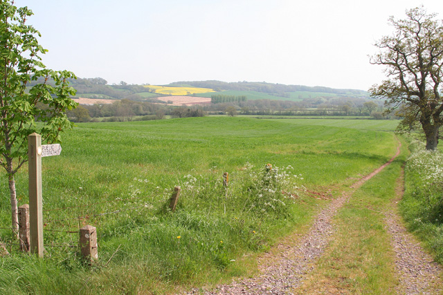 Wiveliscombe: footpath to Slape Moor