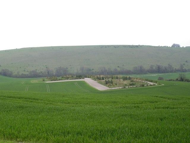 Mini plantation near Upper Green