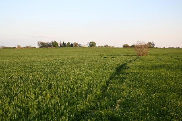 Towards Ingleby Chase