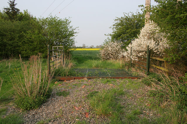 Cattle grid near Langar, Vale of Belvoir
