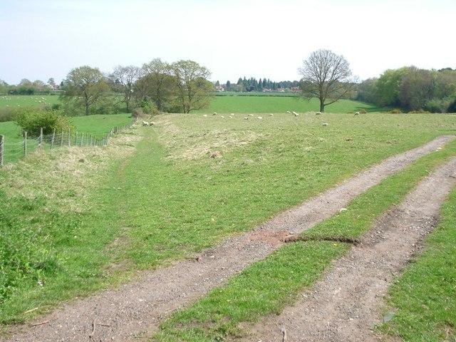 Bridleway between Hound House Road and Lawbrook Lane