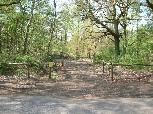 Junction of bridleway with Farley Heath Road