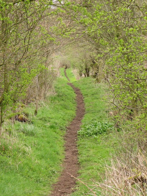 Footpath from Nemphlar