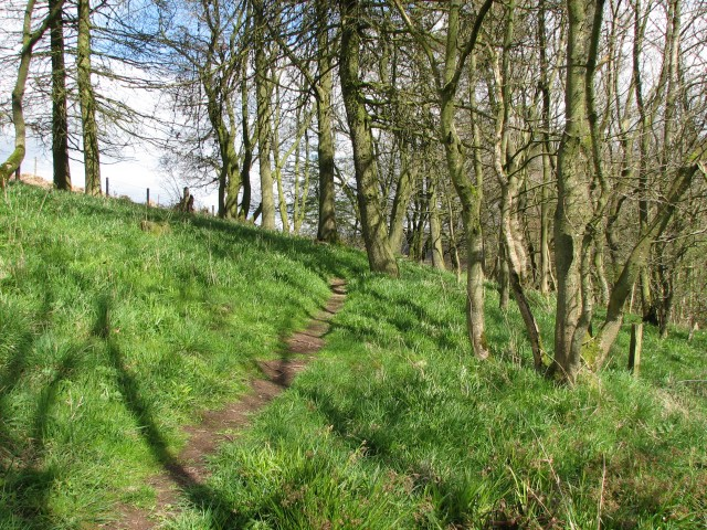 Footpath above Cartland Craigs