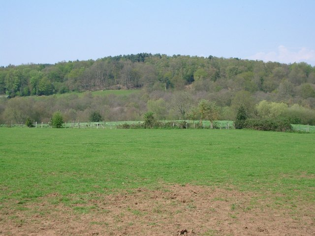 Fields north of Northcote Lane