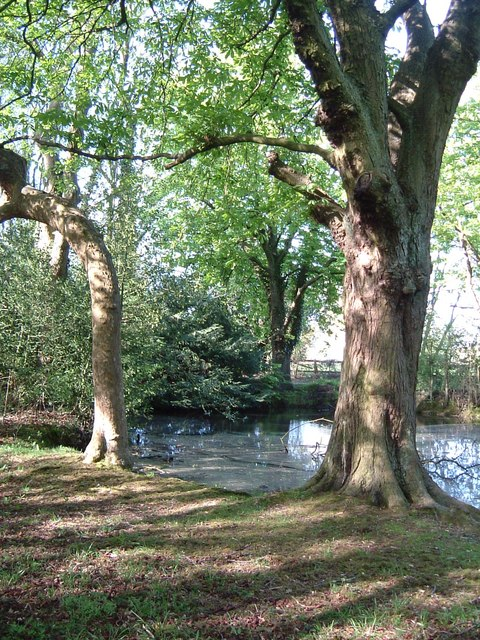 Braziers End Pool