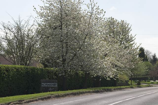 Northern Approach to Normanby