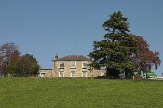 Marton Hill