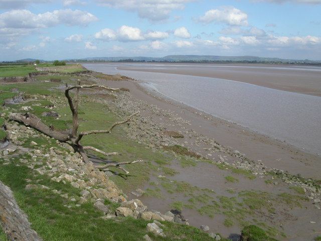 Bank of the river Severn