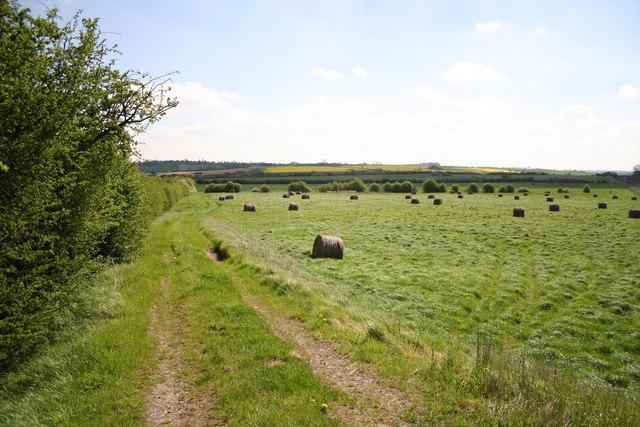Towards Summerfield's Hill