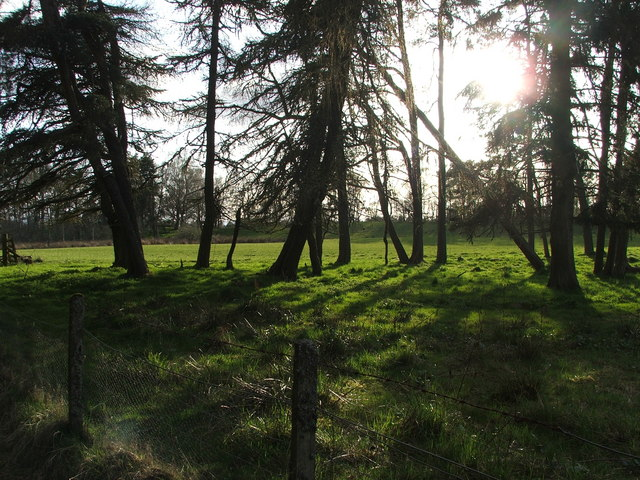 Croftland