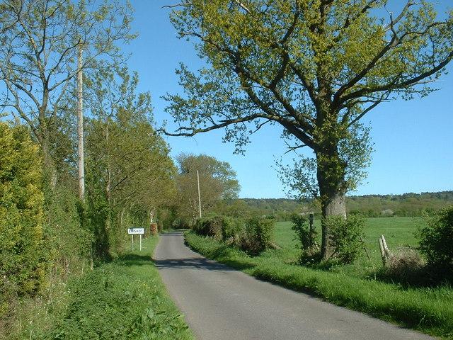 Leafy Ewshot lane